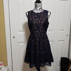 NWT banana republic navy lace dress 8P